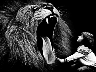 Little Boy And Lion